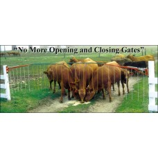 Drive Through Electric Gates
